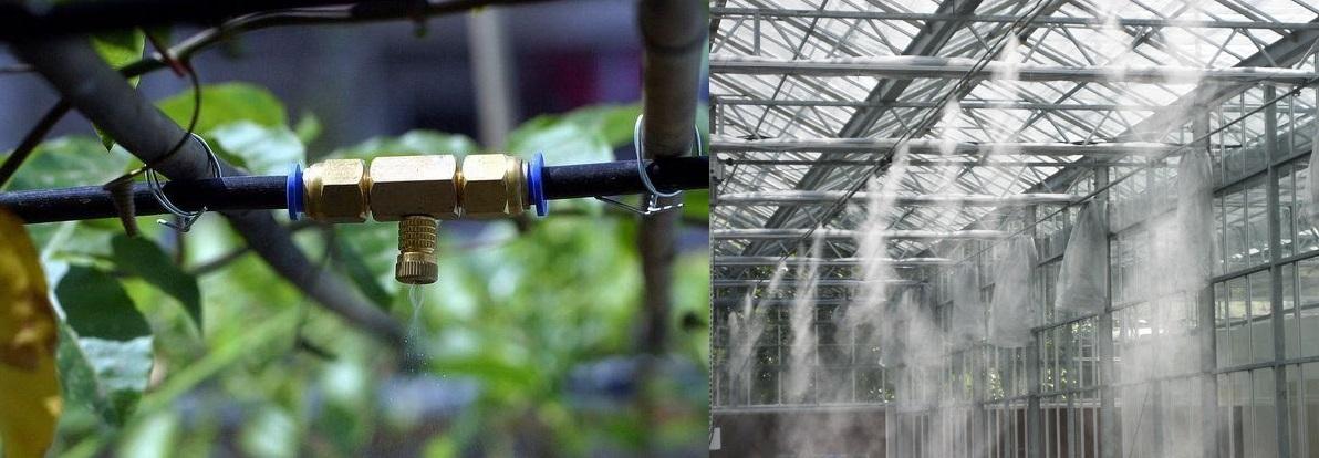 تعفير ونظام التغشية, Fogging and Misting System-UAEplusplus.com