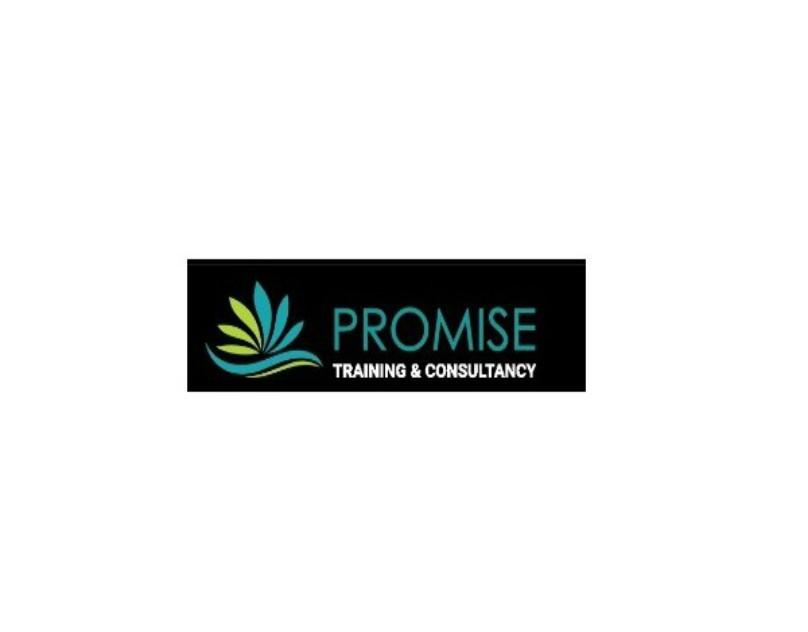 Promise Training & Consultancy-UAEplusplus.com